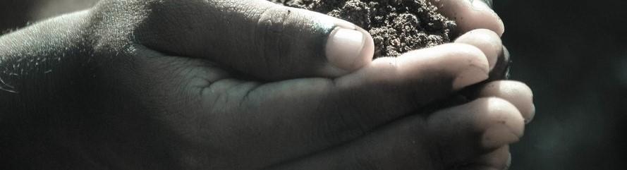 nurturing soil